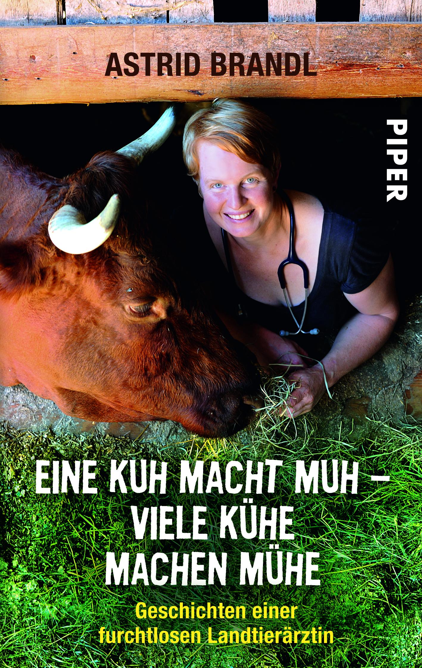 Eine Kuh macht muh - viele Kühe machen Mühe von Astrid